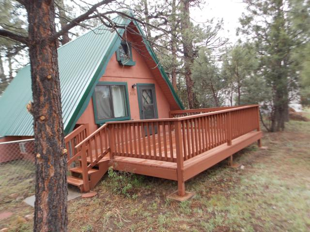 2896 Big Pine Road, Overgaard, AZ 85933 (MLS #5929383) :: Brett Tanner Home Selling Team