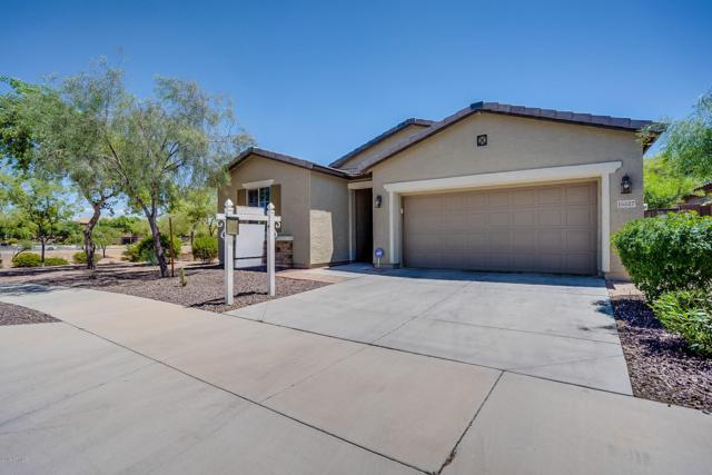 15527 W Poinsettia Drive, Surprise, AZ 85379 (MLS #5929390) :: Brett Tanner Home Selling Team