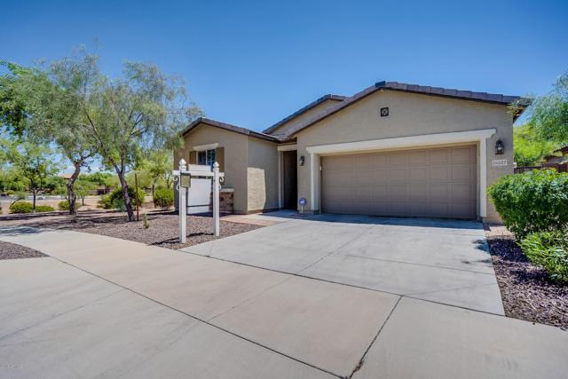 15527 W Poinsettia Drive, Surprise, AZ 85379 (MLS #5929390) :: Occasio Realty