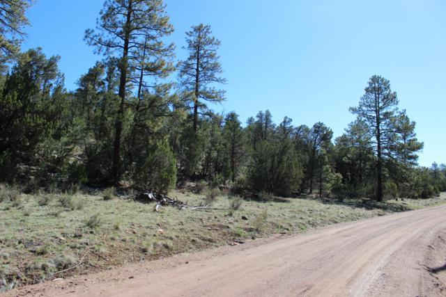 1904 E Green Valley Road, Overgaard, AZ 85933 (MLS #5929394) :: Brett Tanner Home Selling Team