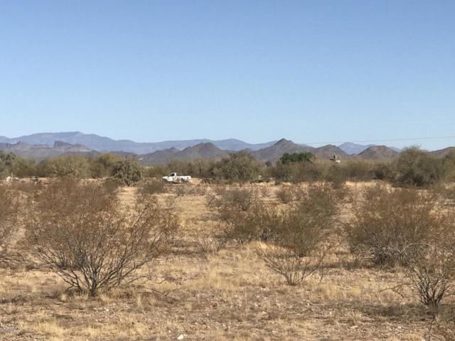 176XX W Dale Lane, Surprise, AZ 85374 (MLS #5929404) :: Yost Realty Group at RE/MAX Casa Grande