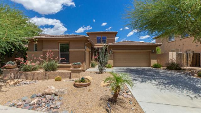 1524 W Pelican Court, Chandler, AZ 85286 (MLS #5929423) :: The Kenny Klaus Team
