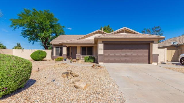 640 S Marie Drive, Chandler, AZ 85225 (MLS #5929424) :: Openshaw Real Estate Group in partnership with The Jesse Herfel Real Estate Group