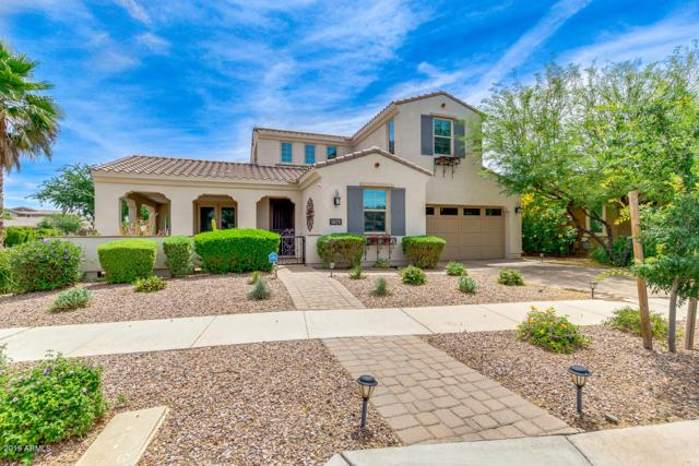 5029 S Cambium Lane, Mesa, AZ 85212 (MLS #5929428) :: Openshaw Real Estate Group in partnership with The Jesse Herfel Real Estate Group