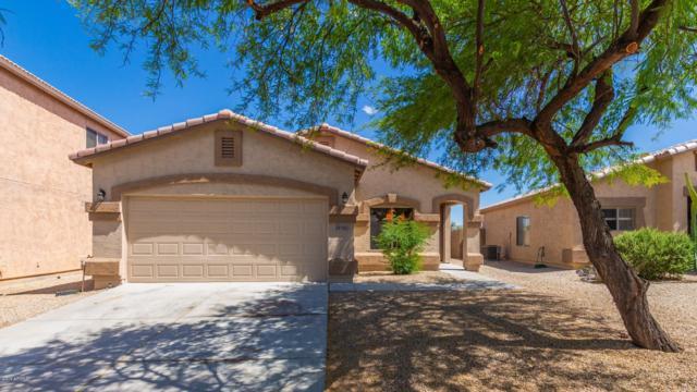 29189 N Shannon Drive, San Tan Valley, AZ 85143 (MLS #5929438) :: Yost Realty Group at RE/MAX Casa Grande