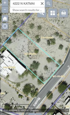 4222 N Katmai Street, Mesa, AZ 85215 (MLS #5929484) :: Occasio Realty