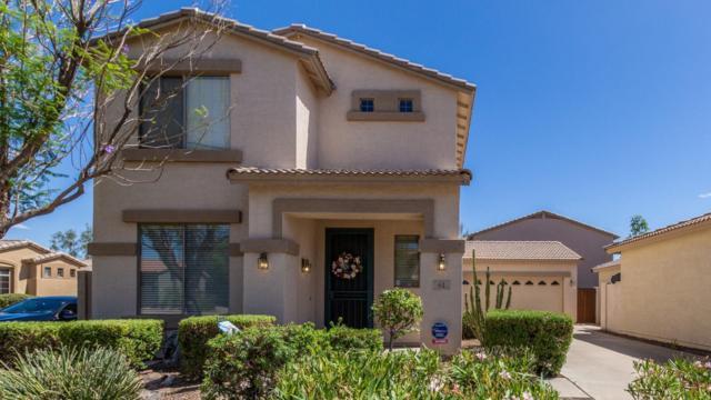 61 W Beechnut Place, Chandler, AZ 85248 (MLS #5929502) :: Yost Realty Group at RE/MAX Casa Grande
