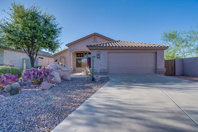 7221 E Palo Chino Court, Gold Canyon, AZ 85118 (MLS #5929526) :: CC & Co. Real Estate Team