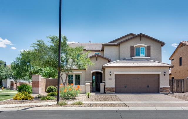 3067 E Trigger Way, Gilbert, AZ 85297 (MLS #5929536) :: CC & Co. Real Estate Team