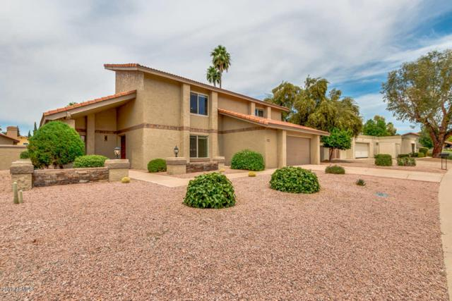 8548 N Farview Drive, Scottsdale, AZ 85258 (MLS #5929556) :: Occasio Realty