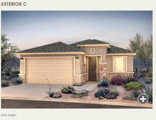 20156 W Buchanan Street, Buckeye, AZ 85326 (MLS #5929557) :: CC & Co. Real Estate Team
