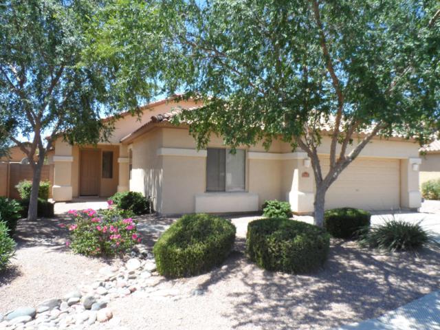4321 E Augusta Avenue, Chandler, AZ 85249 (MLS #5929565) :: My Home Group