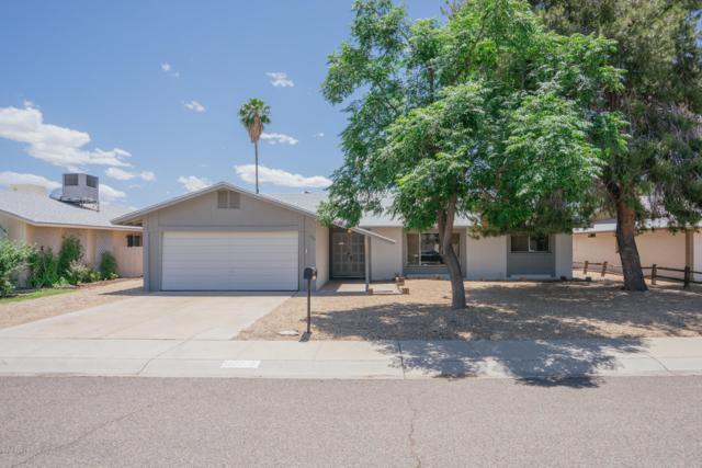 5227 W Hearn Road, Glendale, AZ 85306 (MLS #5929574) :: Santizo Realty Group