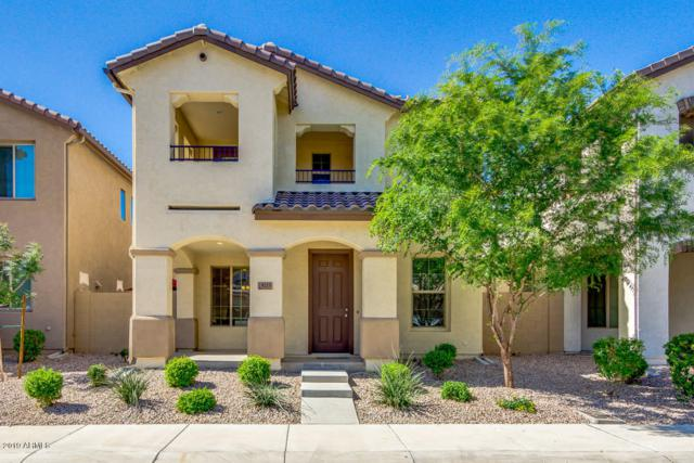 9213 W Coolbrook Avenue, Peoria, AZ 85382 (MLS #5929603) :: Yost Realty Group at RE/MAX Casa Grande