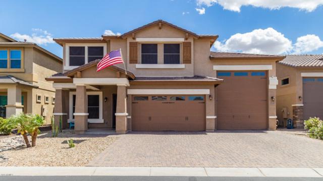26689 N 82ND Drive, Peoria, AZ 85383 (MLS #5929607) :: Yost Realty Group at RE/MAX Casa Grande