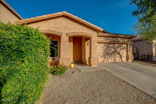 29091 N Cactus Circle N, San Tan Valley, AZ 85143 (MLS #5929612) :: CC & Co. Real Estate Team