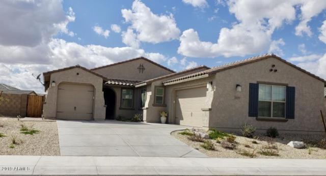 15303 S 182ND Lane, Goodyear, AZ 85338 (MLS #5929646) :: Occasio Realty