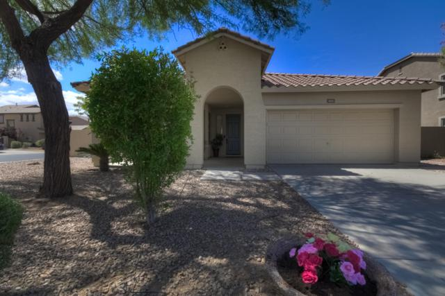 4651 E Hazeltine Way, Chandler, AZ 85249 (MLS #5929692) :: Revelation Real Estate