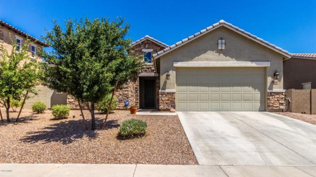 18418 W Turquoise Avenue, Waddell, AZ 85355 (MLS #5929693) :: The AZ Performance Realty Team