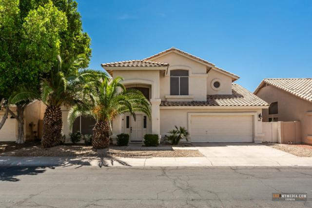 16257 S 12TH Place, Phoenix, AZ 85048 (MLS #5929694) :: Yost Realty Group at RE/MAX Casa Grande