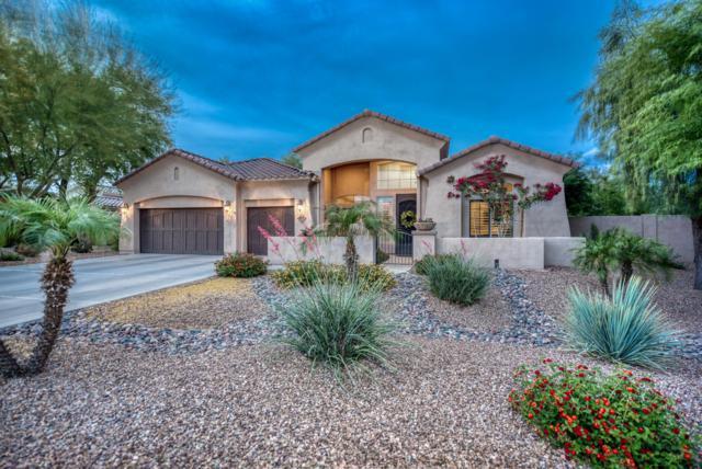 894 E County Down Drive, Chandler, AZ 85249 (MLS #5929698) :: CC & Co. Real Estate Team