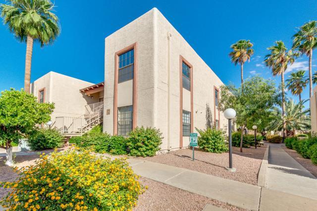205 N 74TH Street #155, Mesa, AZ 85207 (MLS #5929708) :: Occasio Realty