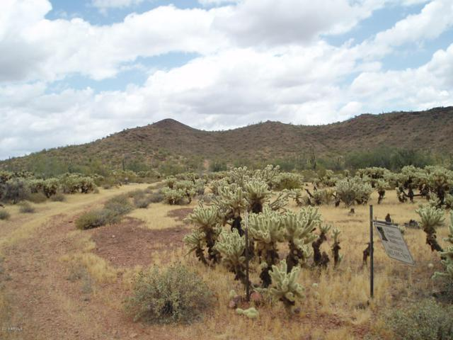 30488 W Cloud Road, Unincorporated County, AZ 85361 (MLS #5929723) :: Conway Real Estate