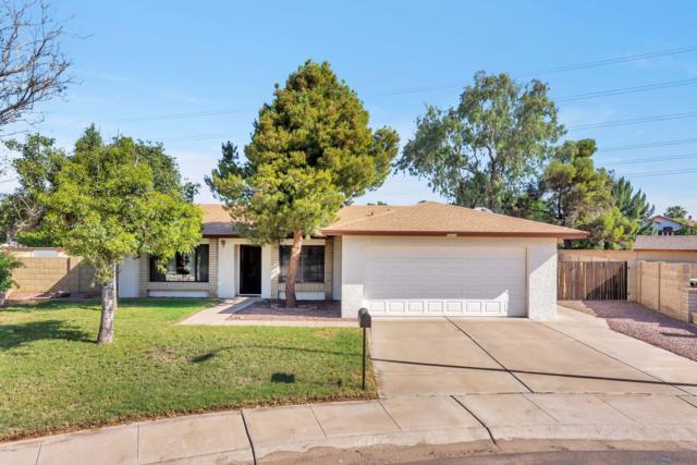 5424 W Shaw Butte Drive, Glendale, AZ 85304 (MLS #5929742) :: Yost Realty Group at RE/MAX Casa Grande