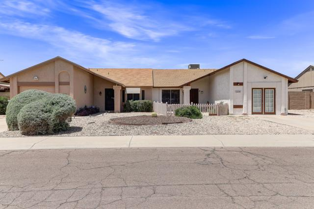16434 N 18TH Street, Phoenix, AZ 85022 (MLS #5929759) :: The AZ Performance Realty Team