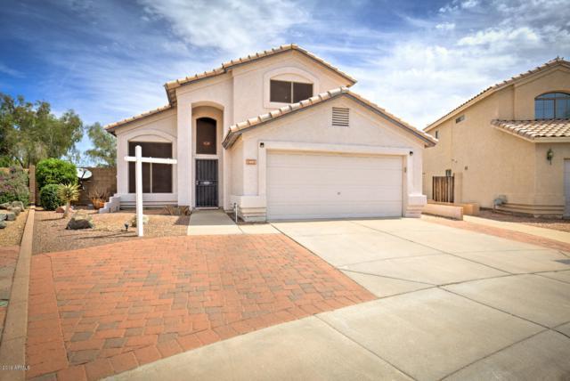 13403 S 47TH Way, Phoenix, AZ 85044 (MLS #5929766) :: Yost Realty Group at RE/MAX Casa Grande