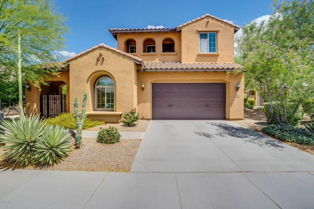 3784 E Covey Lane, Phoenix, AZ 85050 (MLS #5929771) :: The Property Partners at eXp Realty
