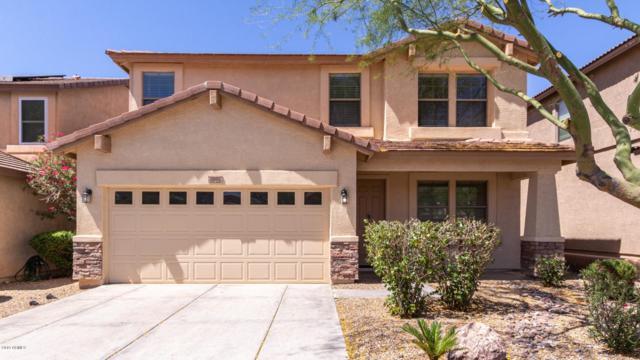 1918 E Cashman Road, Phoenix, AZ 85024 (MLS #5929785) :: Riddle Realty