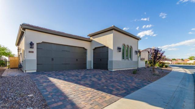 36246 N Crucillo Drive, San Tan Valley, AZ 85140 (MLS #5929786) :: The Laughton Team