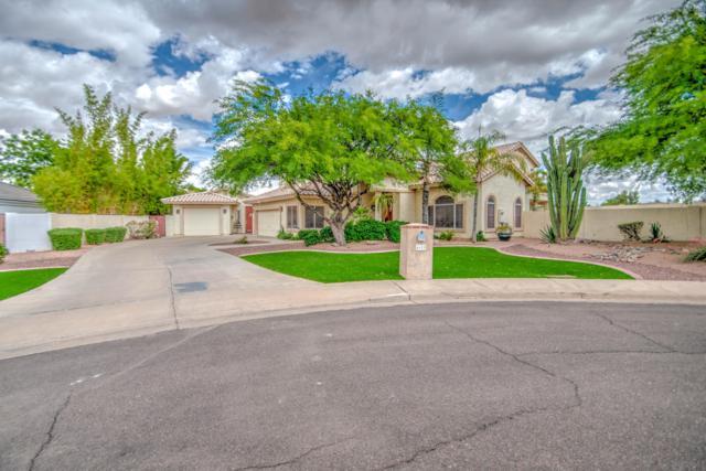 4628 E Enrose Circle, Mesa, AZ 85205 (MLS #5929788) :: Occasio Realty