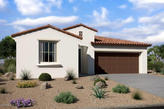 21069 W Coronado Road, Buckeye, AZ 85396 (MLS #5929789) :: Riddle Realty