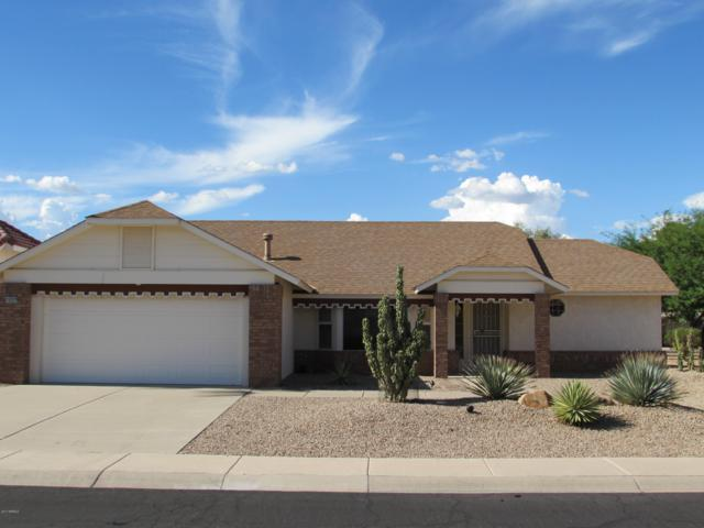14522 W Panther Drive, Sun City West, AZ 85375 (MLS #5929790) :: The Wehner Group
