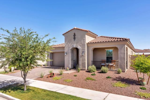 20458 W Delaney Drive, Buckeye, AZ 85396 (MLS #5929821) :: Riddle Realty