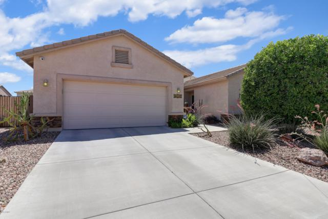 30427 W Vale Drive, Buckeye, AZ 85396 (MLS #5929825) :: The Kenny Klaus Team