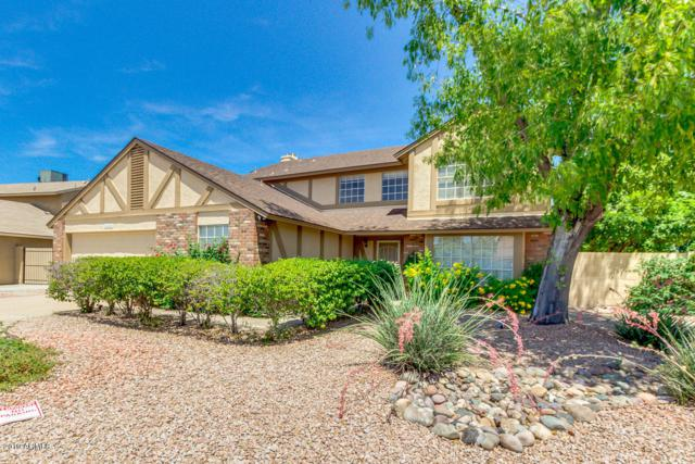 3508 E Morrow Drive, Phoenix, AZ 85050 (MLS #5929834) :: The Wehner Group