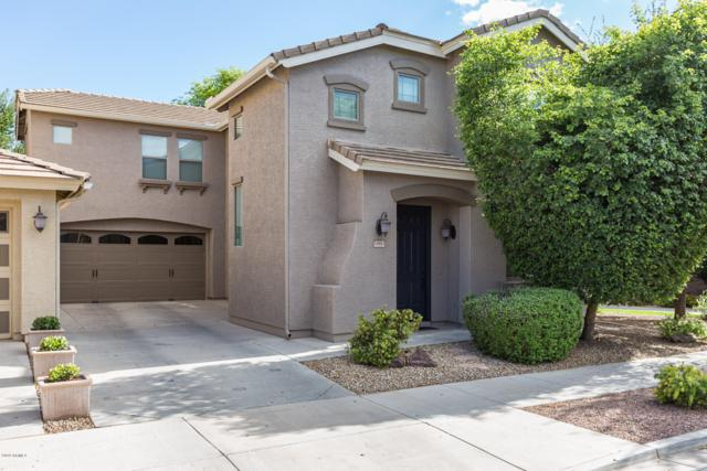 18881 E Swan Drive, Queen Creek, AZ 85142 (MLS #5929837) :: Relevate | Phoenix