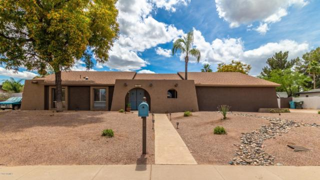 5921 E Sweetwater Avenue, Scottsdale, AZ 85254 (MLS #5929853) :: The Wehner Group