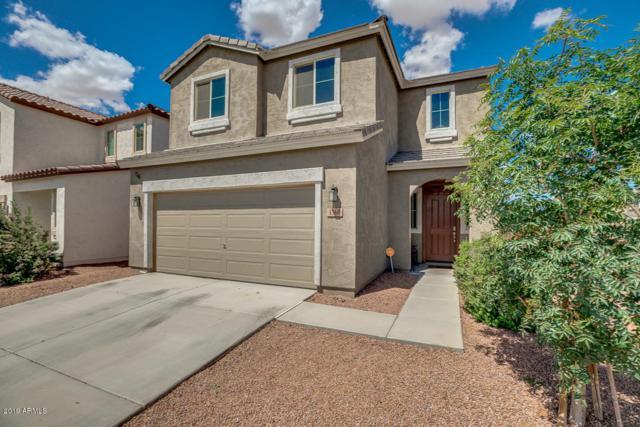 1360 E Palomino Way, San Tan Valley, AZ 85143 (MLS #5929866) :: Occasio Realty