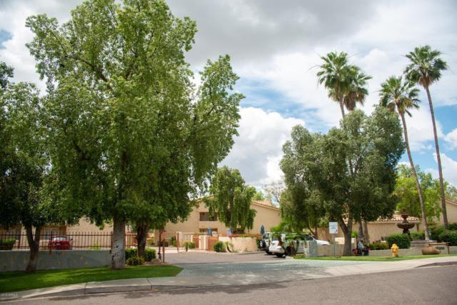 1333 E Morten Avenue #136, Phoenix, AZ 85020 (MLS #5929888) :: Phoenix Property Group