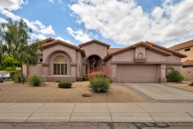 4423 E Kirkland Road, Phoenix, AZ 85050 (MLS #5929925) :: The Property Partners at eXp Realty