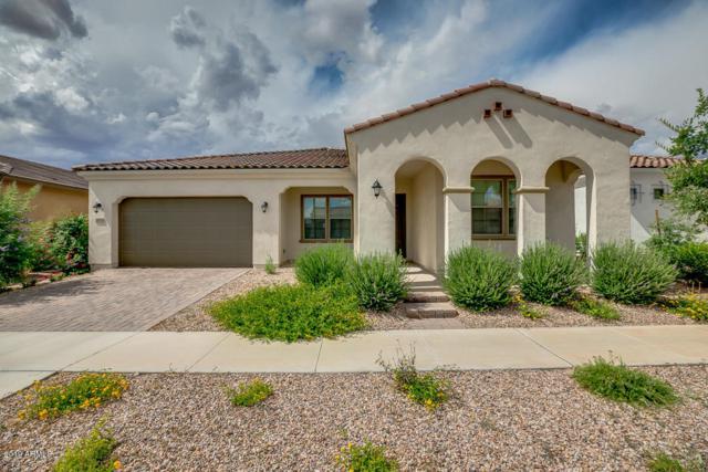 10656 E Palladium Drive, Mesa, AZ 85212 (MLS #5929926) :: The Results Group