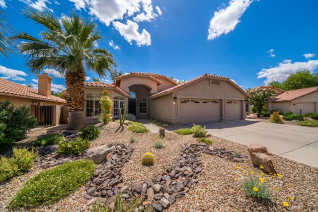 311 S Cobblestone Drive, Gilbert, AZ 85296 (MLS #5929937) :: Riddle Realty