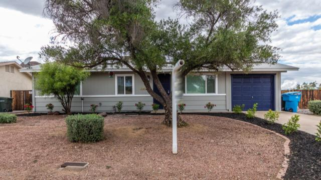 14834 N 21ST Place, Phoenix, AZ 85022 (MLS #5929945) :: Riddle Realty