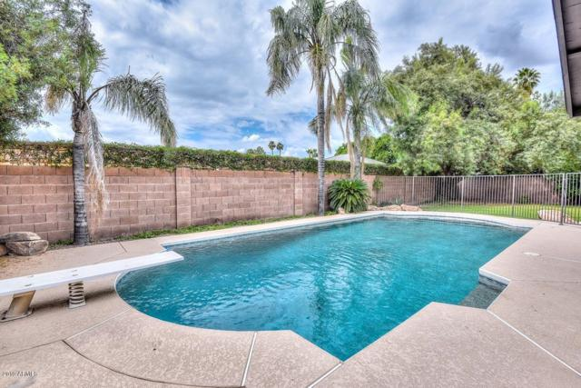 247 E Coral Gables Drive, Phoenix, AZ 85022 (MLS #5929950) :: The Kenny Klaus Team