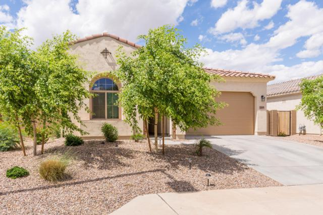 20160 W Hadley Street, Buckeye, AZ 85326 (MLS #5929969) :: The Pete Dijkstra Team