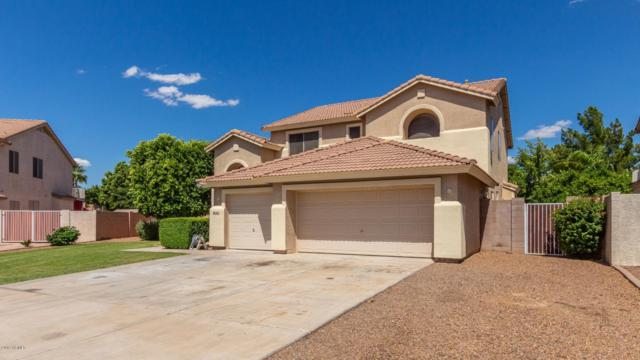 1653 S Citrus Cove, Mesa, AZ 85204 (MLS #5930007) :: Occasio Realty
